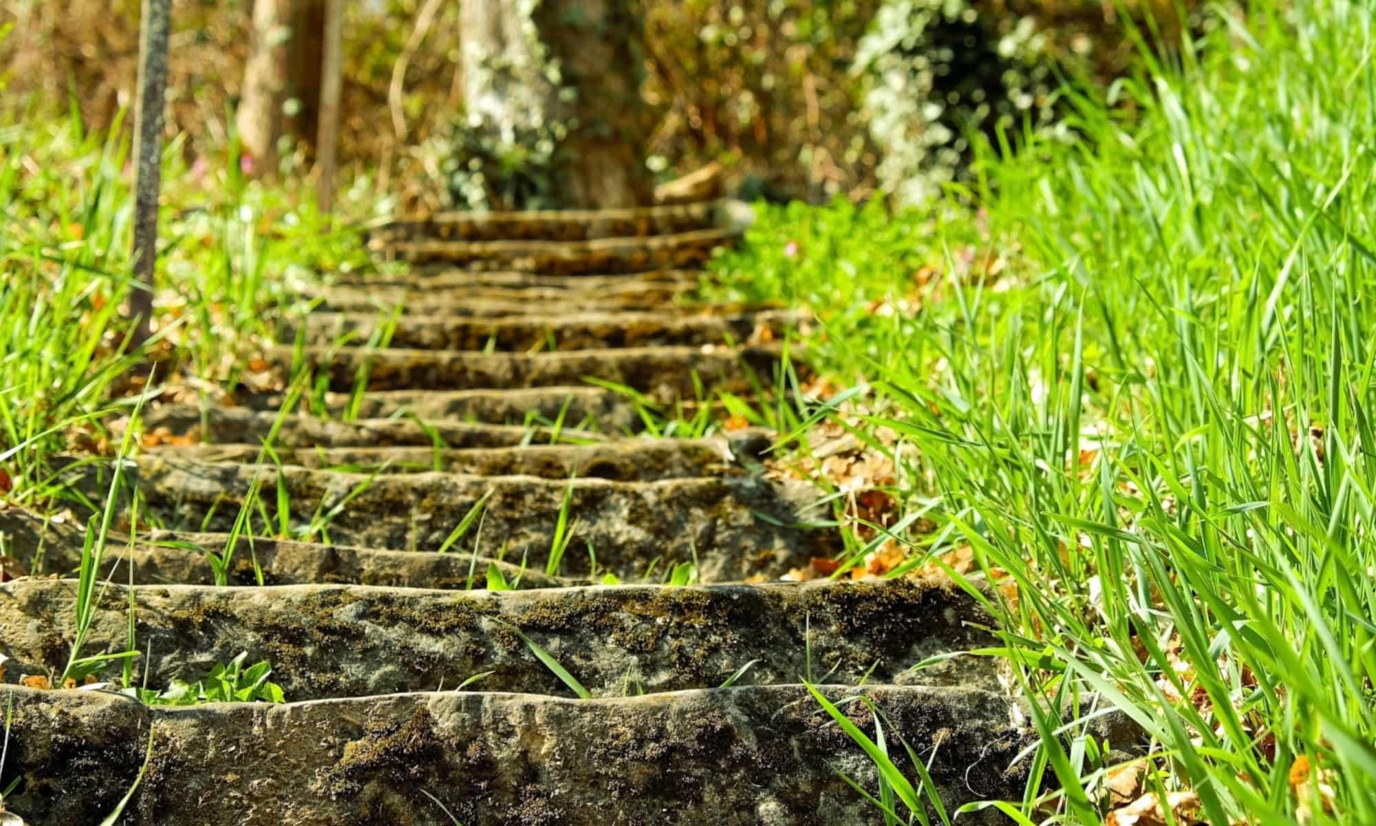 Treppe in der Natur