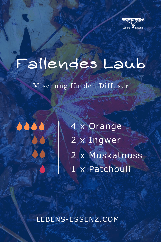 Fallendes Laub - Mischung für den Diffuser - mit Orange, Ingwer, Muskatnuss, Patchouli